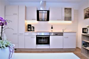 Virtuve vai virtuves aprīkojums naktsmītnē Apart - Petra