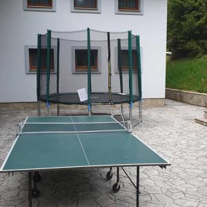 Stolní tenis v ubytování Club Rezidence Pod Lučí nebo okolí
