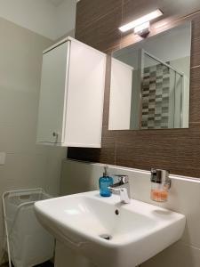 Semmelweis Panoramic Luxury Apartment 604衛浴