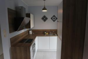 Küche/Küchenzeile in der Unterkunft Apartments Obdach