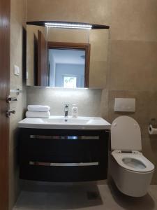 A bathroom at Apartmani Benjamin
