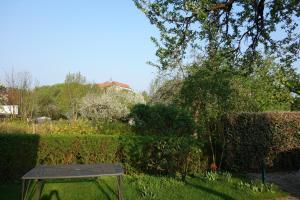 A garden outside Familienwohnung mit Dachterrasse