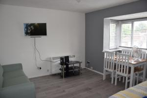 A television and/or entertainment centre at 1 Bedroom Apartment Ponders End
