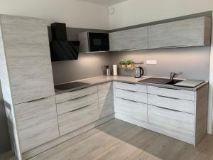 Kuchyň nebo kuchyňský kout v ubytování Apartmán Lipno-Šestka