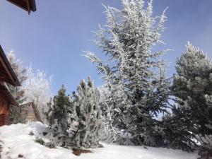 Chalet Les 4 Feuilles im Winter