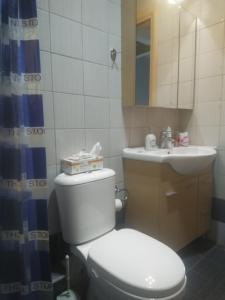 Ванная комната в Holiday and Business Home 1.2.3
