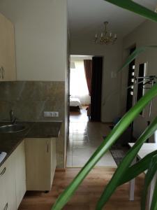 Virtuvė arba virtuvėlė apgyvendinimo įstaigoje Jaukus butas Šiaulių miesto centre