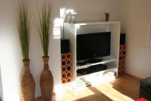 TV a/nebo společenská místnost v ubytování Appartement Enns by Schladmingurlaub