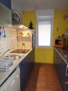 Kuhinja oz. manjša kuhinja v nastanitvi Anabela