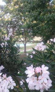 A garden outside Casa Country House Girasole