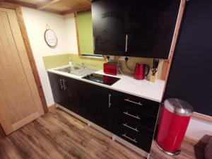 A kitchen or kitchenette at Tiny House-Hot Tub-St Clears-Pembrokeshire-Tenby