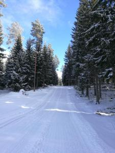 Tervalepikon Torpat during the winter