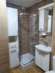 A bathroom at Vilotic group, Apartman 3