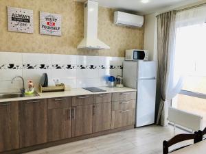 A kitchen or kitchenette at Apartment Olga