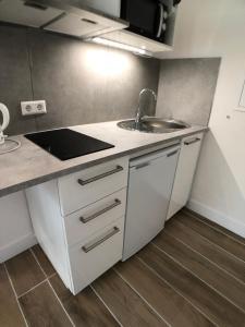 Küche/Küchenzeile in der Unterkunft Aramis Studio Hotel
