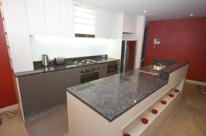 A kitchen or kitchenette at Pyrmont Point Modern Apartments