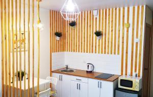 Кухня или мини-кухня в Studia Business Class