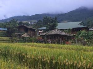 Zmong Homestay