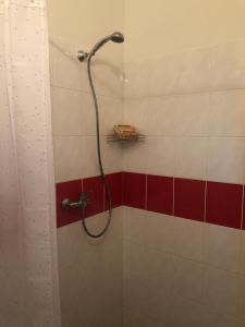 Vonios kambarys apgyvendinimo įstaigoje Apartment Pulse Fitness
