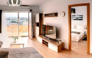 Un televizor și/sau centru de divertisment la ZEN Apartments Cluj