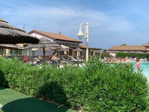 Der Swimmingpool an oder in der Nähe von Fattoria Palazzeta