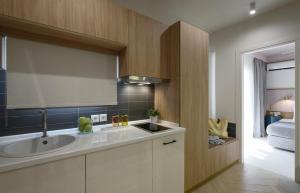 A kitchen or kitchenette at Castristudios