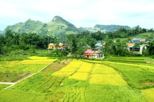 Bac Ha Threeland homestay