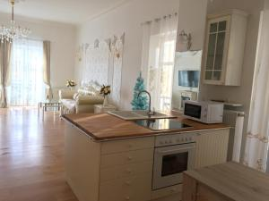 A kitchen or kitchenette at Apartments Andronic & Capitolina
