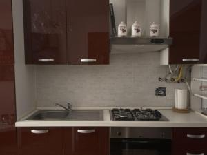 A kitchen or kitchenette at A delightful new apartment close to Trieste center