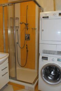 Koupelna v ubytování Apartmán Lipánek