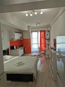 O bucătărie sau chicinetă la Palas Apartments
