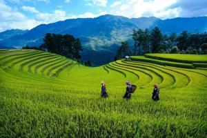 Nha Nghi Phu Ly