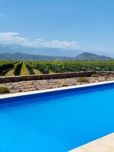 The swimming pool at or near Casa de Huespedes Chañarmuyo