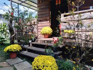 Wood House Garden