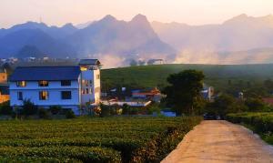 Moc Chau Cottage homestay