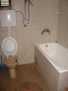 A bathroom at Apartments Maslina