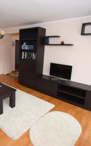 Un televizor și/sau centru de divertisment la Măgurei Apart 4 rooms