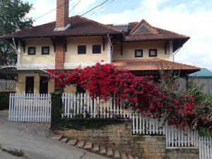 Phong Lâm home