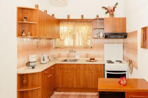 A kitchen or kitchenette at VILLA TATIANA - TETRAKTYS