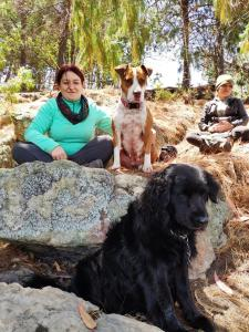 Pet or pets staying with guests at LA CABAÑA DE SOL