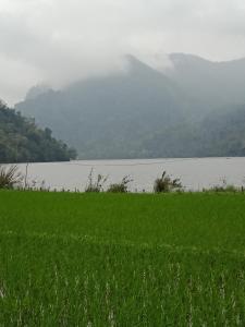 Hồng Nhung Homestay-Ba Bể