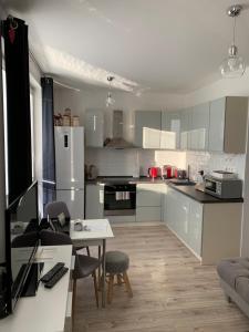 Kuchyňa alebo kuchynka v ubytovaní Lenkas apartment