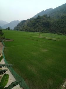 Hồng Nhung homestay
