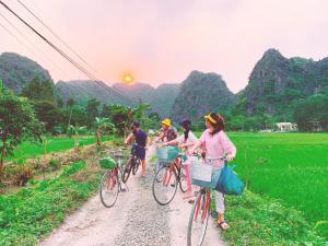 Sunny Trang An homestay