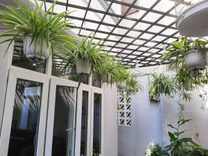 DINO HOUSE DA NANG