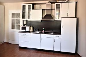Kuchyň nebo kuchyňský kout v ubytování Apartament Viktoria