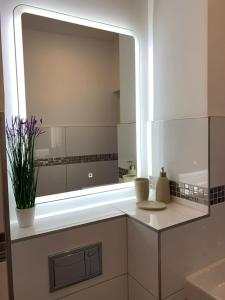 A kitchen or kitchenette at Apartamenty Zieleniec-Julia 3