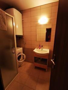 Koupelna v ubytování Apartment 180