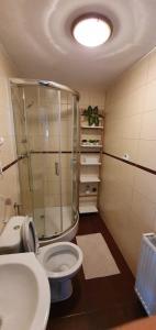 Łazienka w obiekcie Willa przy Czarnej Bramie
