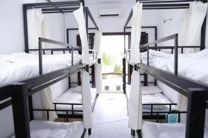 D-Dorm - Luxury Dormitory